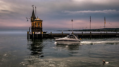 Konstanz Harbour Scene (Bernd Thaller) Tags: konstanz badenwürttemberg deutschland de germany harbour bodensee ship tower lake water outdoor duck