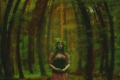 Daualogn (Moonless_Nigth_and_Melancholy) Tags: light green beautiful forest dark lost woods mysterious dreamy conceptual ros sigur daualogn