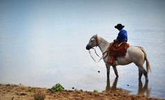 Absorto (Eduardo Amorim) Tags: sunset brazil horses horse southamerica brasil criollo caballo cheval atardecer caballos tramonto sonnenuntergang dam prdosol cavalos pelotas damm pferde cavalli cavallo cavalo gauchos pferd riograndedosul barrage pampa poniente anoitecer coucherdesoleil hest aguada hevonen campanha brsil chevaux gaucho entardecer crepsculo  amricadosul aude poente diga hst gacho  amriquedusud  gachos  sudamrica suramrica amricadelsur  sdamerika crioulo caballoscriollos criollos   costadoce americadelsud  crioulos cavalocrioulo americameridionale caballocriollo eduardoamorim cavaloscrioulos
