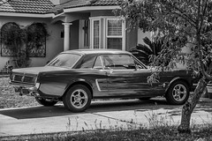 Mustang monochrome (randyherring) Tags: california ca blackandwhite bw house tree classic ford window monochrome grass car us afternoon unitedstates outdoor sanjose driveway mustang classiccars