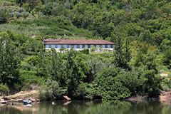 Sur le Douro (hans pohl) Tags: trees houses portugal nature landscapes maisons roofs arbres porto rivers douro paysages toits fleuves