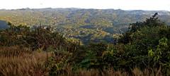 Serra de Baturité - Ceará