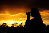 DSC_0206 (timmie_winch) Tags: nikon nikond3000 d3000 august august2016 2016 sun sunset sunsetsuffolk sunsetoversuffolkcountryside sunsetovercornfields sunsetovercornfield silhouette 18105mm 18105vr nikon18105mmvrlens shadows golden goldenhour goldenlight elliedunn ellie eleanordunn ells eleanor ellsdunn dunn landscape landscapephotography landscapephotographer naturephotographer naturephotography nature portrait portraitphotography portraiture portraitphotographer portraiturephotography portraiturephotographer portraitofaphotogragher portraitofaphotographer timwinchphotography tim timwinch winch debenham ip14 suffolk