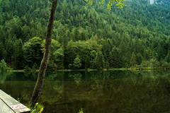 Inzell am Falkensee 02 (bartstoppe) Tags: inzell falkensee bayern bavaria natur sony natural light see