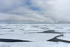Ice floe in the Arctic Ocean - Svalbard - Spitsbergen, Norway (doritbz) Tags: icefloe ice svalbard iceberg frozen floatingonwater floatingice arcticocean polarclimate coldtatureemper landscape day nopeople outdoors wildlife colorimage svalbardislands sea water norway no