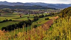 Hochburgblick nach Sexau (MH *) Tags: berge mountains fields meadows felder weiden ausblick hochburg sexau d7200 sigma30mmart schwarzwald blackforest