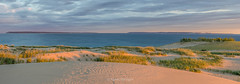 Early In Late September (Aaron Springer) Tags: michigan northernmichigan lakemichigan thegreatlakes sleepingbeardunesnationallakeshore manitouislands manitoupassage dune dunegrass sand sky sunlight outdoor nature panoramic landscape