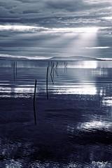 ...Dark Thau... (fredf34) Tags: pond dream reflet sunset thau panorama landscape paysage sun soleil étangdethau hérault languedocroussillon fredf34 fredfu34 k3 pentaxk3 pentax fredf france nature natur sigma 1850 sigma1850f28 bassindethau beautifulearth calme light ricoh ricohpentaxk3 contrejour étang clouds water sea sky morning sunlight sète montsaintclair lighting reflexion reflection bw blackwhite inexplore clairobscur darkserie monochrome dark darksérie