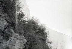para visualizar no site, em grande, e em movimento seguir este link http://ift.tt/2dnQxxC (sombrasdealguem) Tags: rolos encontrados found film feira da ladra flea market fotografia antiga vintage photography photo