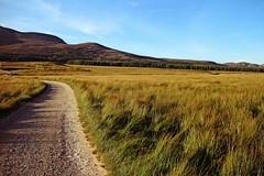 IMG_0419 (LezFoto) Tags: gravelroad grass mountians sky clouds canon eosm glenmuick glenmuickestate royaldeeside scotland