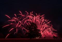 Newby Hall  Ripon, North Yorkshire (johnhjic) Tags: johnhjic north yorkshire fireworks tree trees people red night smoke smoking black ripon uk outdoor naked blow