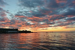 Clouds come floating into my life, no longer to carry rain or usher storm, but to add color to my sunset sky.  (Rabindranath Tagore) (boisderose) Tags: mare sea tramonto sunset trieste golfo gulf boe ottobre october 2016 boisderose