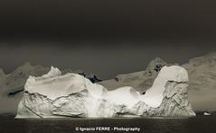 White iceberg (Ignacio Ferre) Tags: white blanco ice antarctica iceberg antrtida
