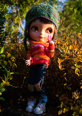 Blythe a Day 28 - first frost