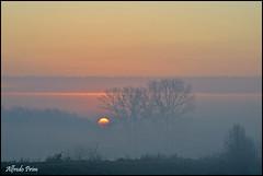 Winter sunrise (alfvet) Tags: sunrise nikon alba natura campagna sole vigevano parcodelticino veterinarifotografi d5100