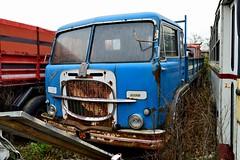 fiat 671N2 (riccardo nassisi) Tags: auto car truck pc rust rusty collection camion wreck piacenza collezione ruggine relitto politi rottame abbandoned epave abbandonata caorso