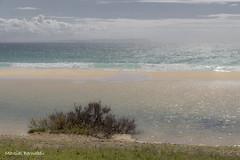 Spain - Cadiz - Tarifa - Bolonia Beach (Marcial Bernabeu) Tags: espaa beach andaluca spain playa andalucia cadiz andalusia cdiz bolonia tarifa bernabeu marcial bernabu
