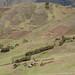 Casas das montanhas