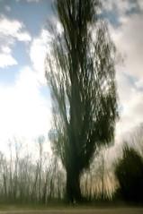 #7957 (UBU ♛) Tags: blues blunotte blupolvere unamusicaintesta blusolitudine landscapeinblues bluubu luciombreepiccolicristalli ©ubu