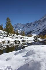 Fafleralp tapis de neige precose (luka116) Tags: automne schweiz switzerland suisse swiss lac svizzera paysage wallis octobre valais 2014 lotschental fafleralp