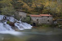Barosa (Chencho Mendoza) Tags: rio molinos caminodesantiago caldasdereis barosa chenchomendoza haidand20