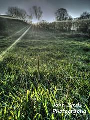 Sunrise Xmas day 2014 (binnsphotography) Tags: xmas grass sunrise beams