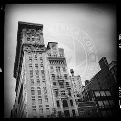NEWYORK-1440