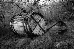 Bodegn Sin Bodega (JL) Tags: blackandwhite bw stilllife white black blancoynegro blanco negro barrel bodegn bandw cask