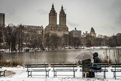 Central Park Snow #1 (Rob (M) Andrews) Tags: nyc snow newyork nikon centralpark manhattan snowing thelake ladiespavillion nikond800 nikon1635mmf4 robertmandrews