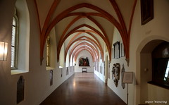 Kreuzgang in der Stiftskirche (diwe39) Tags: stiftskirche kreuzgang alttting frhling2016