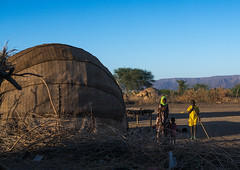 Afar tribe people in front of their oval-shaped hut, Afar region, Afambo, Ethiopia (Eric Lafforgue) Tags: poverty africa woman house color tree home nature boys horizontal children outdoors photography women day village african muslim poor mother property hut camel homemade simplicity housing nomad homestead copyspace ethiopia 2people twopeople mats developingcountry primitive lifestyles hornofafrica afar nomadic eastafrica burra abyssinia greatriftvalley ruralscene fulllenght nonurbanscene danakil indigenousculture africanculture ovalshaped afarregion builtstructure residentialstructure afambo ethio162714