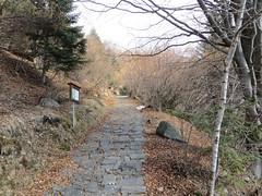 2016-032918 (bubbahop) Tags: switzerland hike locarno 2016 cardada europetrip33