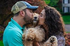IMG_2076 (masemase) Tags: family dog puppy pennsylvania swiss may luna ridge doodle labradoodle newhope mothersday yardley swissridge