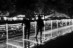 Ljubljana (drasphotography) Tags: travel bridge blackandwhite bw monochrome silhouette night river nikon nightshot nacht fiume monotone monochromatic ponte slovenia ljubljana sw slowenien schwarzweiss brcke bianconero reise nachtaufnahme laibach ljubljanica travelphotography reisefotografie schwarzweis flus d7k nikond7000 drasphotography
