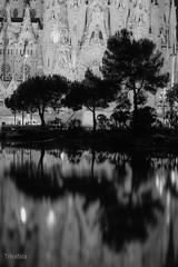 Flicr12015.jpg (Tricfala Photo) Tags: barcelona night noche arquitectura gaudi sagradafamilia arquitecture