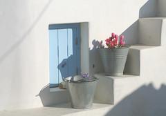 Treppe zum Himmel (ulrike.heck) Tags: ulrikeheck griechenland insel treppe blumen eimer sonne weis white greece sun stairs tulpe tulip stillleben rosa