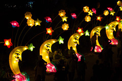 _DSC9729_2 (Elii D.) Tags: light fish flower animal night zoo monkey neon dragons lantern lampion dargon