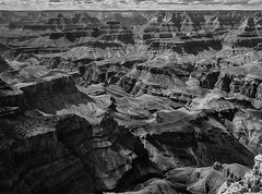 Deep scars (andbog) Tags: arizona blackandwhite bw panorama cliff usa nature monochrome landscape nationalpark lowresolution rocks view grandcanyon unitedstatesofamerica az natura ps canyon bn casio pointandshoot states overlook roccia paesaggio lowres southrim biancoenero compactcamera usnationalpark grandcanyonnationalpark qvr40 casioqvr40 moranpoint geologicalformation silverefexpro2 googlenikcollection