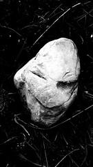 ;-) extraterrestre che fa l'occhiolino !!! (carlini.sonia) Tags: sonia pietra sasso castelluccio norcia montagna vento brezza prato sibillini alieno extraterrestre bn bw