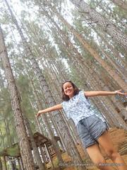 Woman-In-Digital-Dahilayan-Forest-Park-Bukidnon-012 (livingMarjorney) Tags: travels touristspot mindanao bukidnon dahilayanforestpark livingmarjorney womanindigital