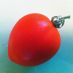 Tomato (Whatknot) Tags: red mississippi tomato tupelo 2016 whatknot
