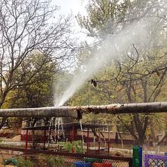 Говорите к зиме готовы? #жэк #odessa #winter