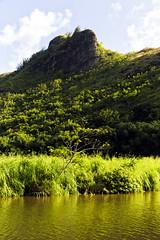 Wailuā II (IanLudwig) Tags: canon photography hawaii lee kauai hawaiian beaches wailua tog togs lydgate gnd hawaiibeaches leefilters niksoftware hawaiiphotos canon1740mmf40lusm vsco cep4 canon5dmkiii hawaiianphotography 5dmkiii rgnd canon5dmarkiii ianludwig lee4x4cpl leefilterfoundation lightroom5 darylbensonnd3reversegradualneutraldensity adobephotoshopcc