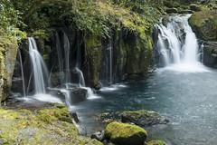 Tengu falls (RenField - Toel-ul Laputa) Tags: autumn green art fall water japan river 50mm nikon sigma valley    kumamoto   kikuchi       nd16  d800e