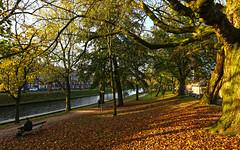 Utrecht, Sterrenburg (JoCo Knoop) Tags: utrecht