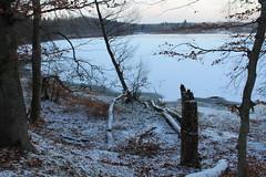 Otomin Lake, Pomorze, Poland (LeszekZadlo) Tags: blue trees winter sunset naturaleza white lake snow ice nature landscape europe natureza eu poland polska polen landschaft polonia ue pomerania pommern pologne kaszuby pomorze paiaje