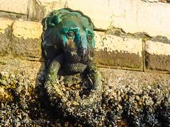 Arsenale (Selina Zampedri) Tags: venice kayak acqua venezia leone tese arsenale veneto bitta metallo afiloacqua