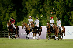 Land Rover MENA Supports This Year's Sentebale Polo Cup as Official Automotive Partner (landrovermena) Tags: club racing abudhabi celebrities abu dhabi polo princeharry unitedarabemirates royalty ghantoot britishroyalty are ghantootracingpoloclub sentebalepolocup hishighnesssheikhfalahbinsultanalnahyan celebritiesroyaltybritishroyalty