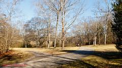 Warner Parks Walkabout - January 17, 2014 (mikerhicks) Tags: winter usa geotagged unitedstates nashville hiking tennessee percywarnerpark warnerparks vaughnsgap canon7dmkii sigma18250mmf3563dcmacrooshsm geo:lat=3606165000 geo:lon=8689669333