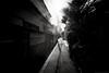 grafica_jp_flickr-1152 (grafica.tokyo) Tags: japan tokyo shinjuku sony voigtlander f45 ii 15mm a7 superwideheliar aspherical ilce7